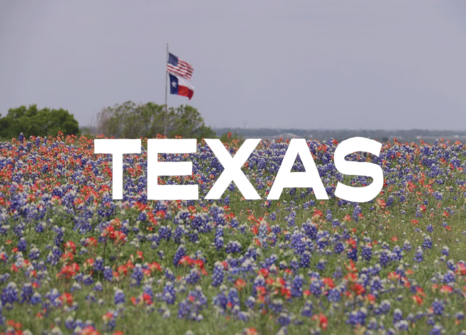 Texas Rules of Civil Procedure